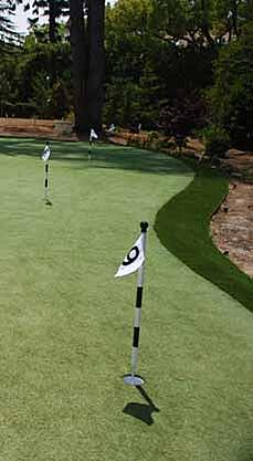 Home Putting Green Installation