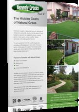 Hidden cost of natural grass