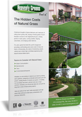 synthetic turf saves money