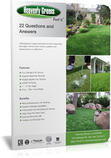 22_Questions_for_Artificial_Turf