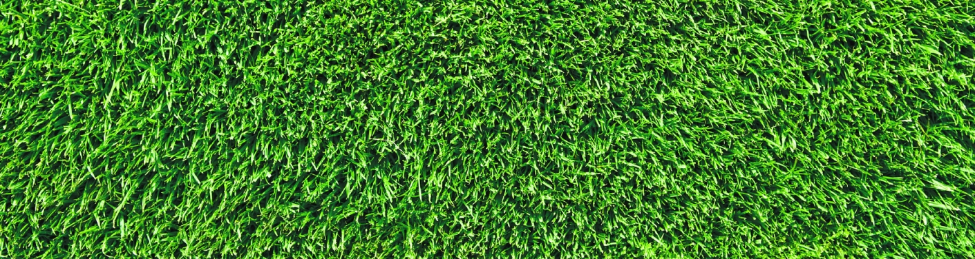 top view of artificial turf