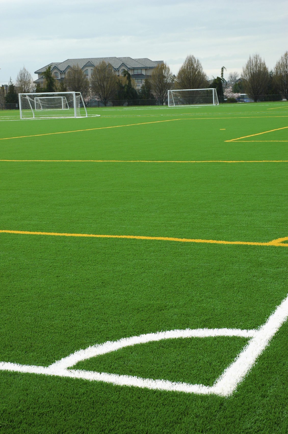 commercial-artificial-turf-soccer-field-internal-4.jpg