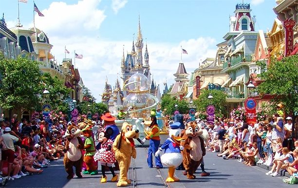 synthetic lawn used at disney world