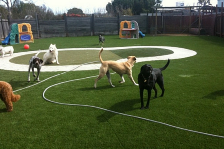 artificial grass on a playground