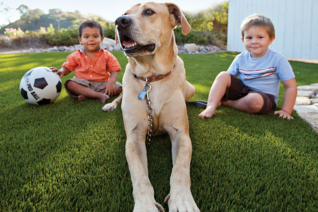 artificial grass with happy dog and children