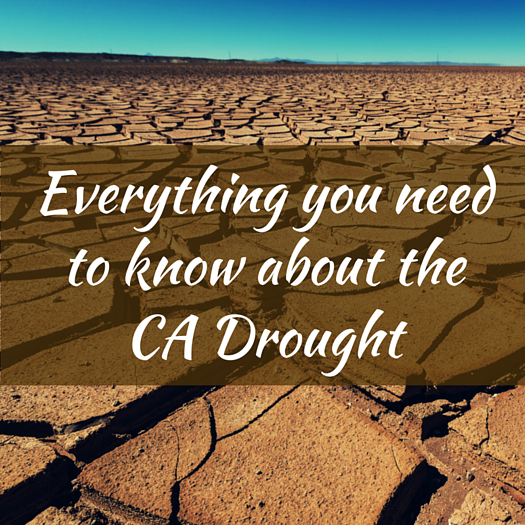 everything-you-need-to-know-about-the-ca-drought