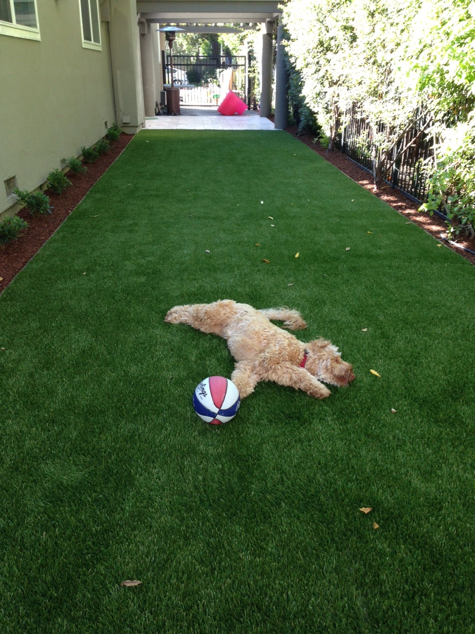 Innovative New Uses For Artificial Turf You Ve Never Thought Of