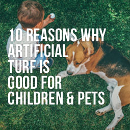 10 Reasons Why Artificial Turf Is Good For Children And Pets http://www.heavenlygreens.com/blog/10-reasons-artificial-turf-is-good-children-pets @heavenlygreens