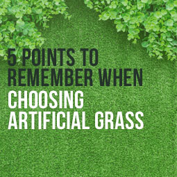 5 Points To Remember When Choosing Artificial Grass http://www.heavenlygreens.com/blog/5-points-to-remember-when-choosing-artificial-grass @heavenlygreens