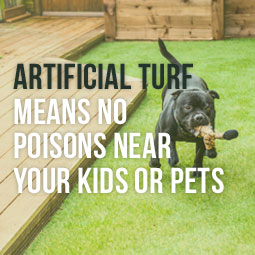 AT-Means-No-Poisons-Kids-Or-Pets-Blog.jpg
