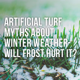 Artificial Turf Myths About Winter Weather - Will Frost Hurt It? http://www.heavenlygreens.com/blog/artificial-turf-myths-about-winter-weather-will-frost-hurt-it @heavenlygreens