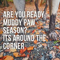 Are You Ready Muddy Paw Season? It's Around The Corner http://www.heavenlygreens.com/blog/how-to-get-ready-muddy-paw-season @heavenlygreens
