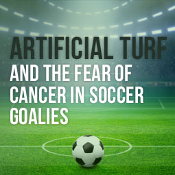 Artificial Turf And The Fear Of Cancer In Soccer Goalies