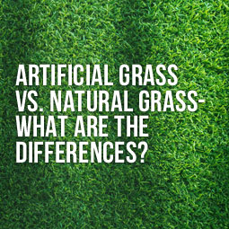 artificial grass close up -what are the differences vs natural