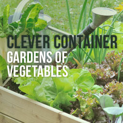 Clever Container Gardens Of Vegetables http://www.heavenlygreens.com/blog/clever-container-gardens-of-vegetables @heavenlygreens