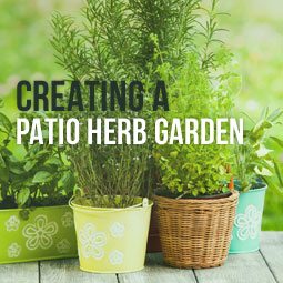 Creating A Patio Herb Garden http://www.heavenlygreens.com/blog/creating-patio-herb-garden @heavenlygreens