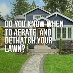 A house with a beautiful lawn that doesn't need aerating and dethatching.