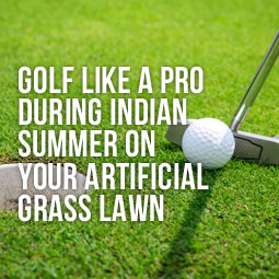 closeup of playing golf on artificial grass lawn