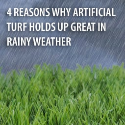 HG - Turf-in-rain-blog