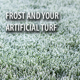 frost-covered-turf