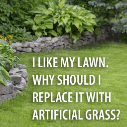 beatiful green lawn with landscaping
