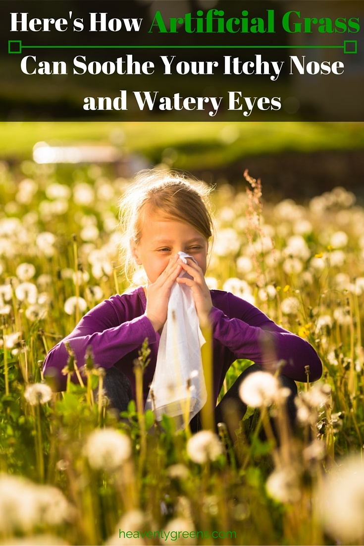 Here's How Artificial Grass Can Soothe Your Itchy Nose and Watery Eyes http://www.heavenlygreens.com/blog/blog/-temporary-slug-c4812ae3-acf2-4204-a749-b6909d4fba80 @heavenlygreens
