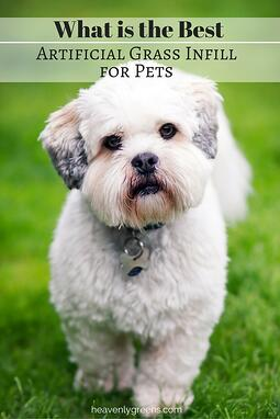 What is the Best Artificial Grass Infill for Pets? http://www.heavenlygreens.com/blog/what-is-the-best-artificial-grass-infill-for-pets @heavenlygreens