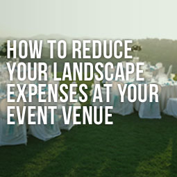 outdoor venue seating arrangement on artificial grass can reduce venue expenses