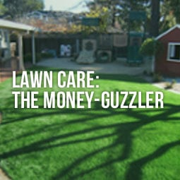 a newly installed synthetic turf for homeowners to avoid the money-guzzling natural lawn maintenance