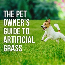 The Pet Owner's Guide To Artificial Grass http://www.heavenlygreens.com/blog/pet-owners-guide-to-artificial-grass @heavenlygreens