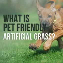 Pet Friendly Artificial Grass  http://www.heavenlygreens.com/blog/what-is-pet-friendly-artificial-grass @heavenlygreens