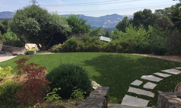 Sonoma County California artificial turf