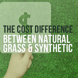 The Cost Difference Between Natural Grass And Synthetic http://www.heavenlygreens.com/blog/natural-grass-and-synthetic-grass-cost-difference @heavenlygreens
