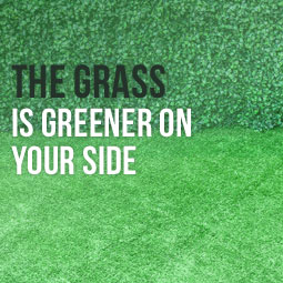 The Grass Is Greener On Our Side http://www.heavenlygreens.com/blog/the-grass-is-greener-on-our-side @heavenlygreens