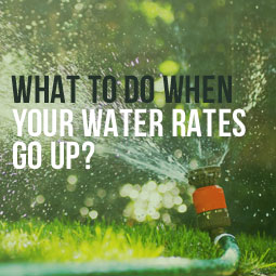 What-To-Do-Water-Rates-Go-Up-Blog.jpg