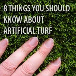 hand-feeling-artificial-grass
