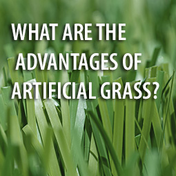 artificial grass closeup