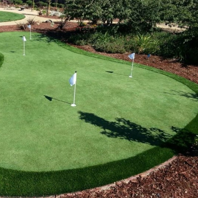 beautiful backyard putting green