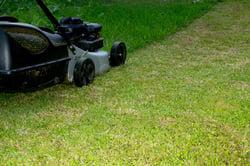 lawn maintenance savings.jpg