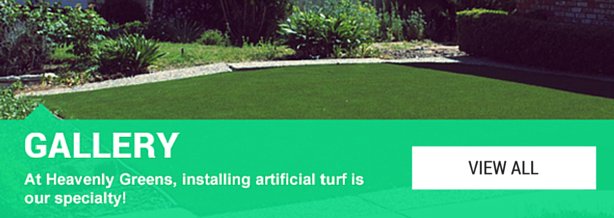 artificial turf gallery