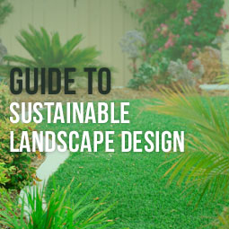Guide To A Sustainable Landscape Design