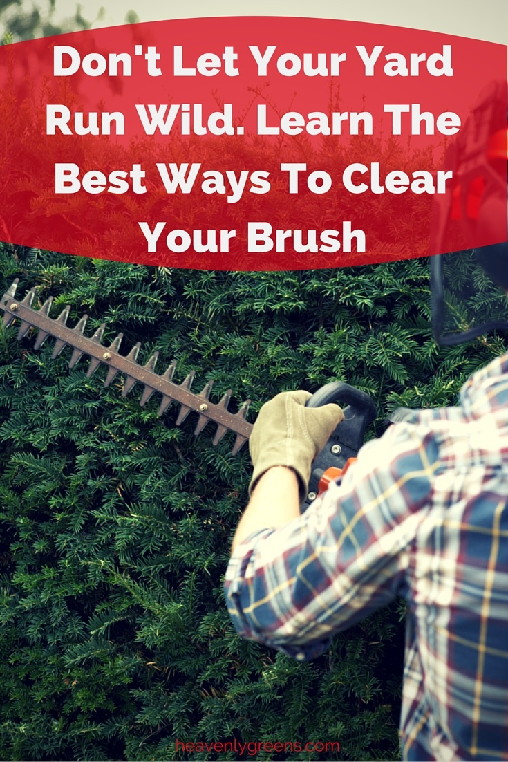 Learn The Best Ways To Clear Your Brush