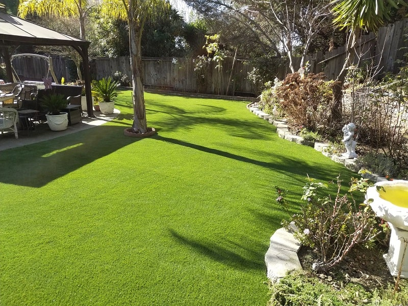Artificial Grass Installed in Hayward, California
