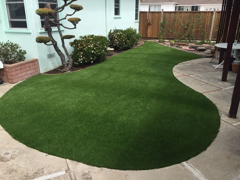 Synthetic grass landscape in Hayward, California lawn