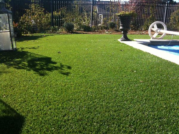 backyard in Los Altos, California