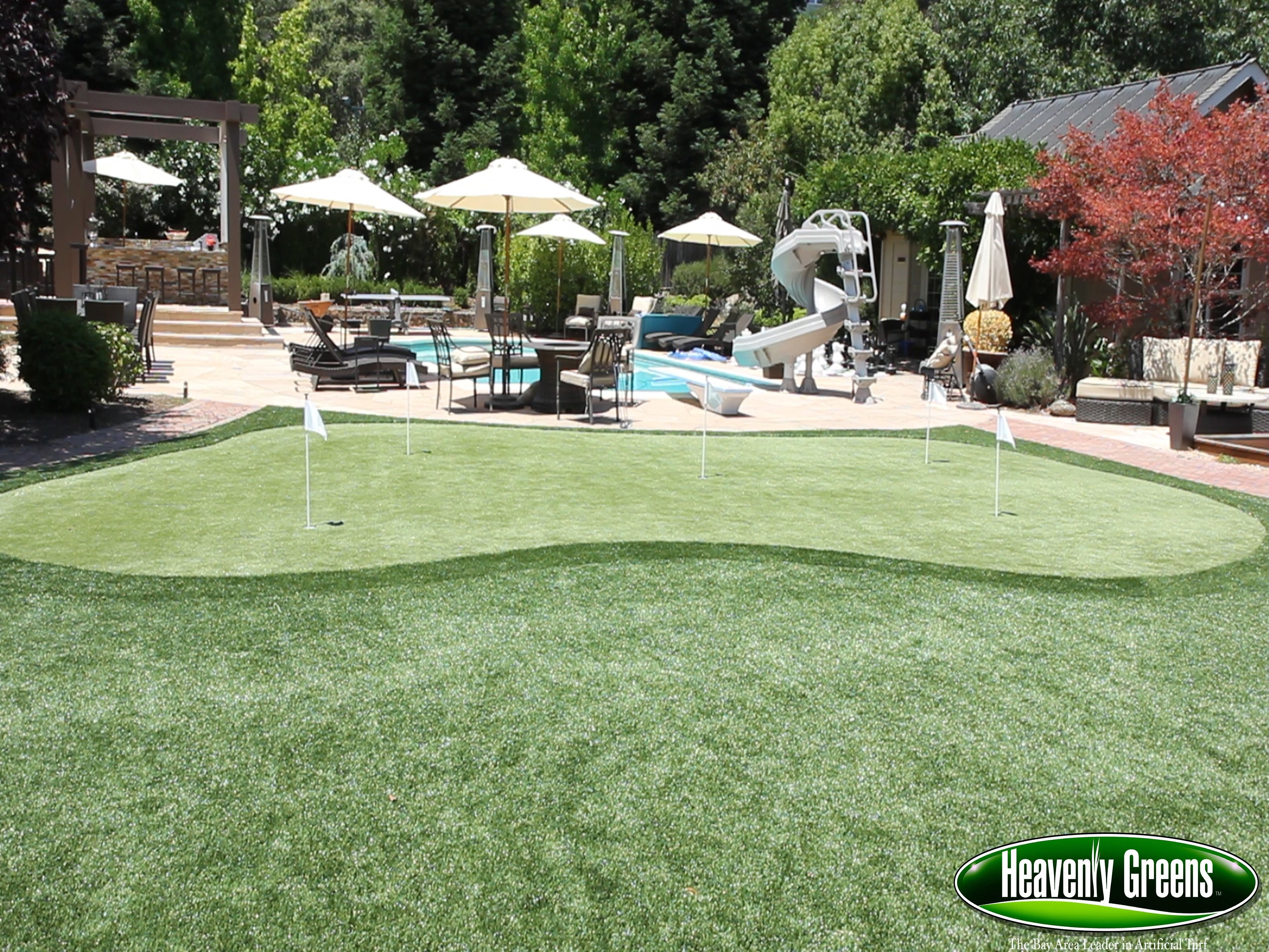 Putting Green Turf