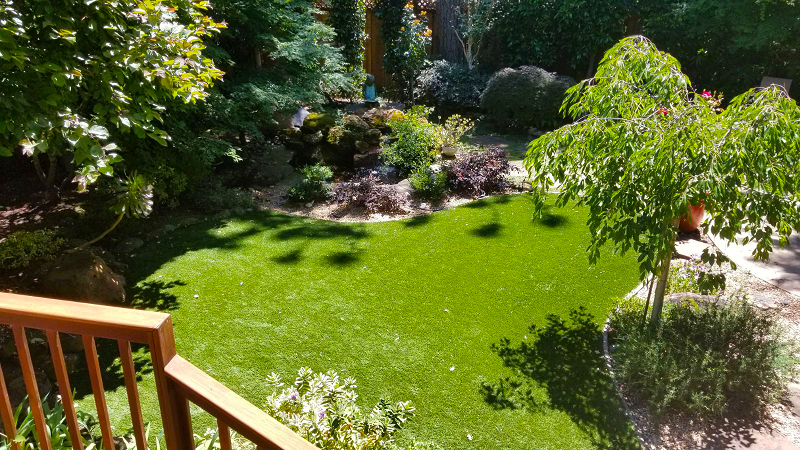artificial turf installed in an san mateo, california lawn