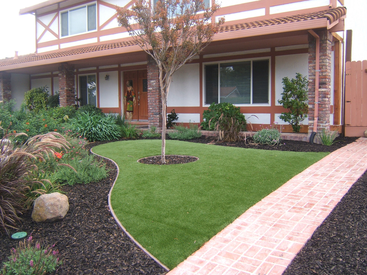 Lawn in san ramon, California
