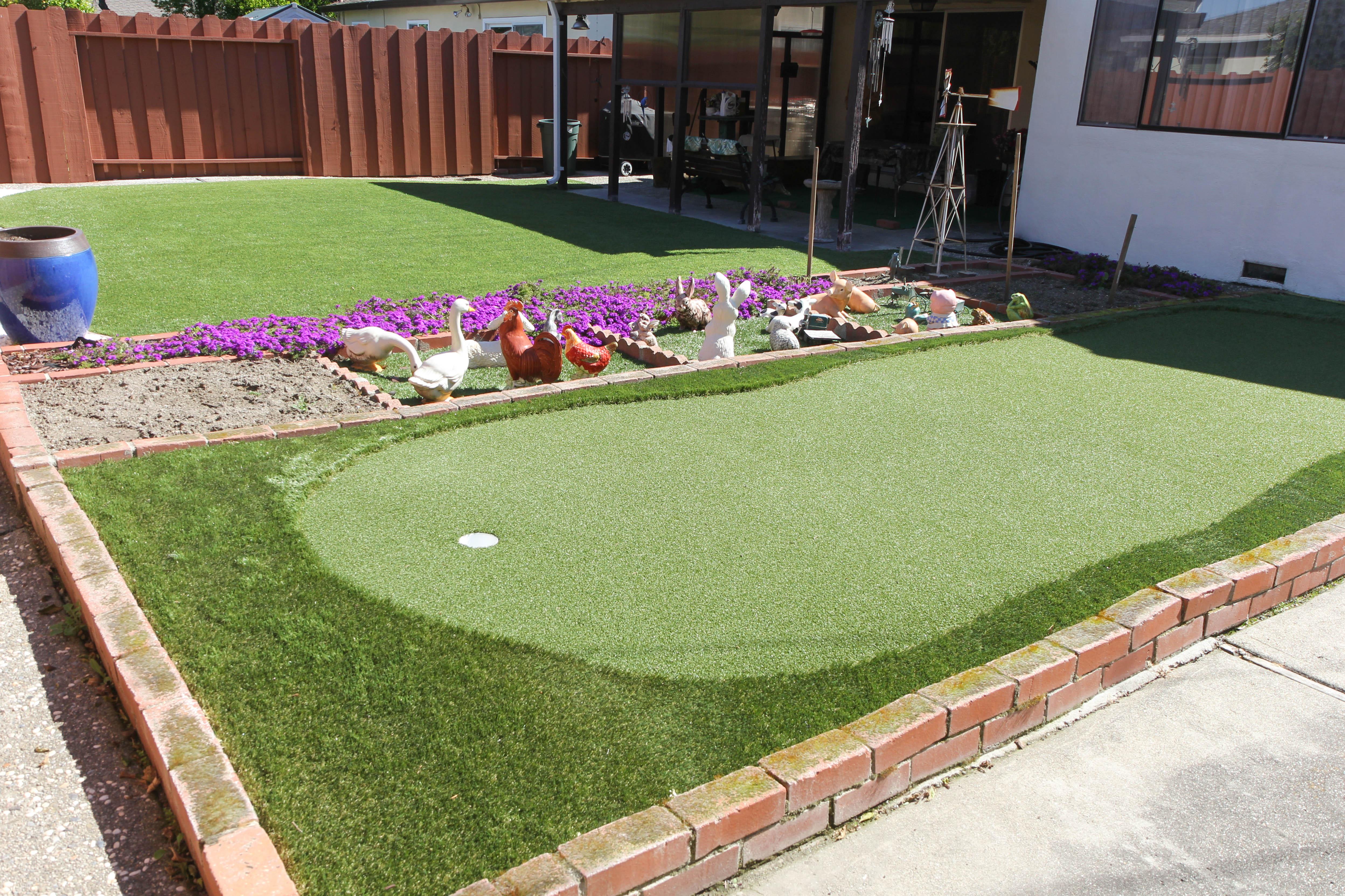 Santa Clara, California Lawn