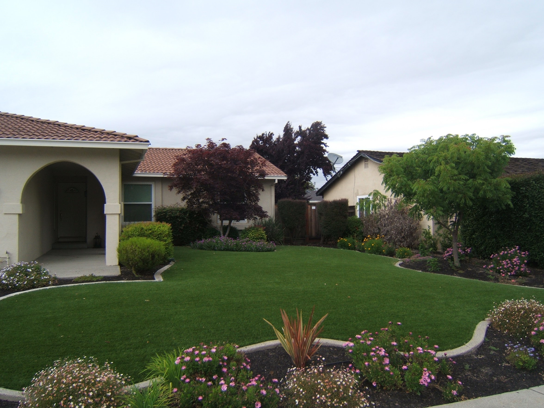 Lawn in Union City, California